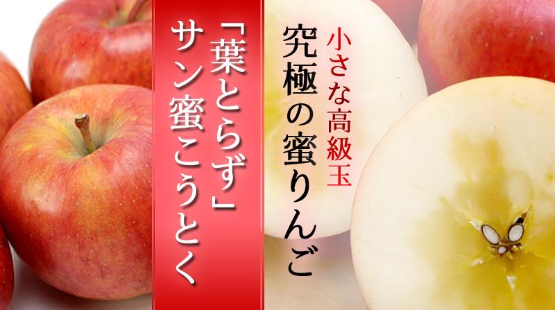 究極の蜜入りんご『サン蜜こうとく』