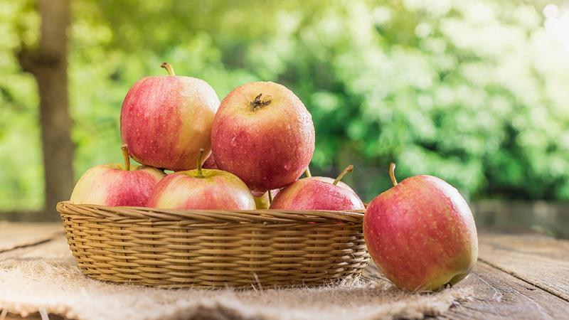 りんごimage