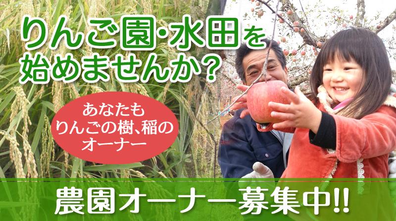 りんご農園オーナー募集中!