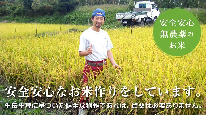 安心安全無農薬のお米