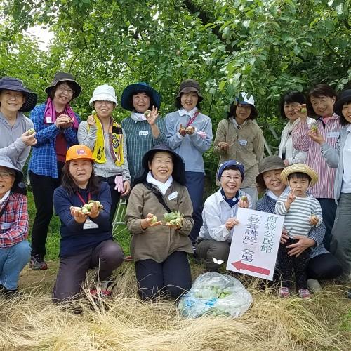 公民館のりんご栽培体験