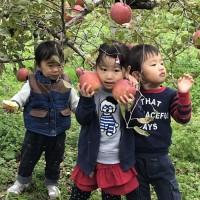 2018.10.30 りんご狩り子供